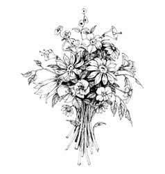 Bunch of flowers bridal bouquet sketch vector image