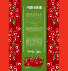 Farm fresh berry banner with juicy cranberry vector