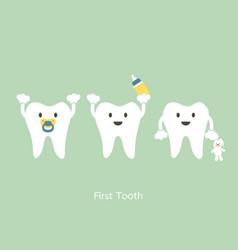 First teeth vector