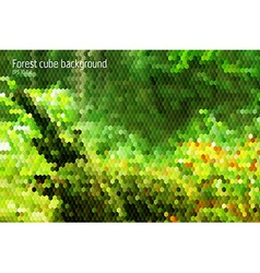 Forest stylish modern background with 3d cubes vector image vector image