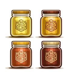 Honey in glass jars vector