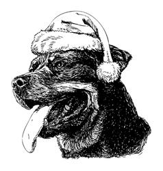 Rottweiler vector