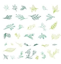 Spring plants sketch icons vector