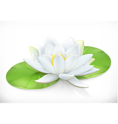 Water lily Lotus flower 3d icon vector image vector image