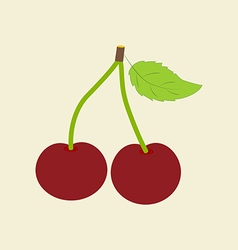 Cherry fruit icon vector
