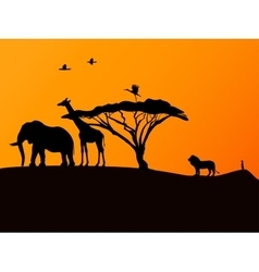 African sunset and animals vector