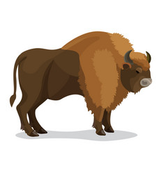 Aurochs animal in brown colour with horns isolated vector