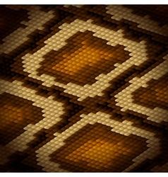 Python snake skin brown background vector