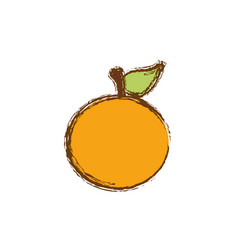 Color orange fruit icon stock vector