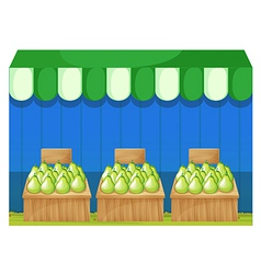 Fruit stands with pears vector