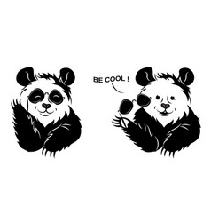 Cool panda draws off glasses vector