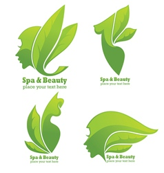 Collection of spa and beauty symbols and signs vector