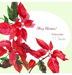 Background with red christmas poinsettia-03 vector