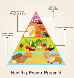 Healthy foods pyramid vector