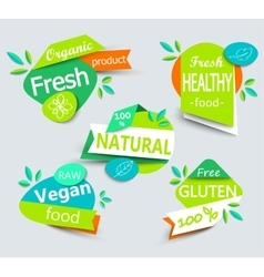 Modern set of healthy organic food labels vector
