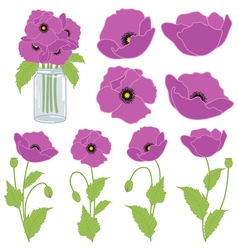Purple Poppies vector image vector image