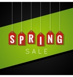 Spring Sale Tag design Background vector image vector image