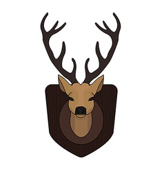 Stuffed taxidermy deer head vector image