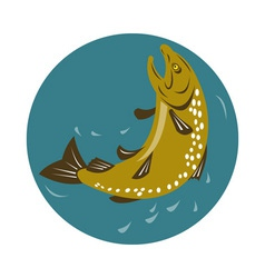 Spotted trout fish jumping vector