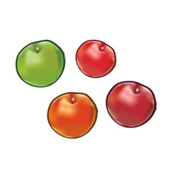 Set of apples isolated on white background vector image