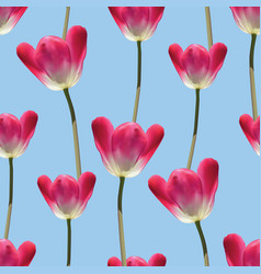 Realistic tulips seamless pattern vector
