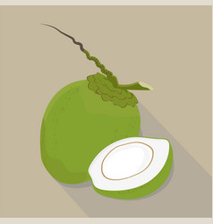 coconut isolated flat style vector image
