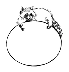 Cute raccoon lies on a round banner with blank vector image vector image