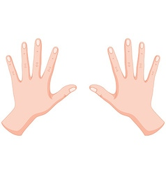 Human hands left and right vector image vector image