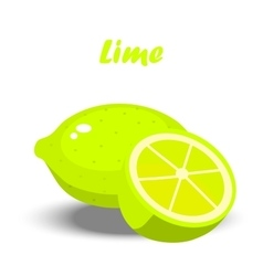 Fresh lime and slice vector
