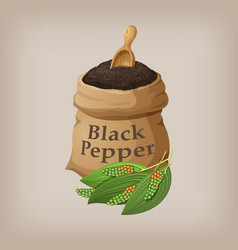 black pepper in the bag vector image vector image