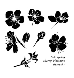 Set of black silhouette spring cherry blossom vector image