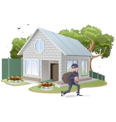 Male thief robbed house burglaries property vector