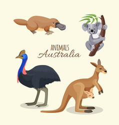 Australia animals collection of brown kangaroo vector