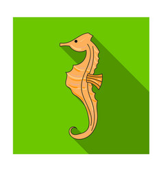 seahorse icon in flat style isolated on white vector image vector image