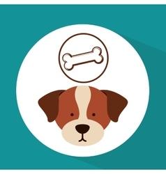 veterinary dog care bone food icon vector image vector image