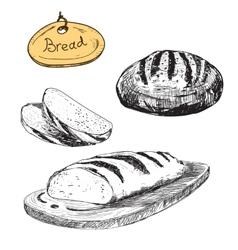 Bread hand drawn set vector