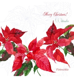 Background with red christmas poinsettia-04 vector