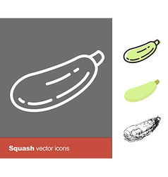 Squash icons vector
