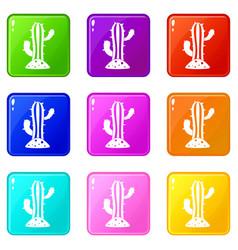 cactus set 9 vector image vector image