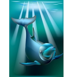 Delfin and rays of sunny vector image vector image