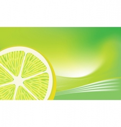 fresh lemon vector image vector image