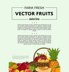 fresh organic fruit poster vector image vector image