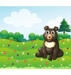 A brown bear sitting in the garden vector image