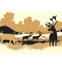 Reindeer tundra vector image