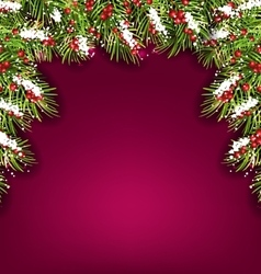 Holiday background with fir branches and berries vector