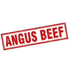 Angus beef red grunge square stamp on white vector