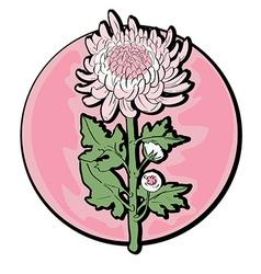 chrysanthemum clip art vector image vector image