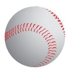 Isolated baseball ball vector