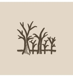 Tree with bare branches sketch icon vector