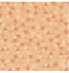Abstract triangle in brown censor skin color vector